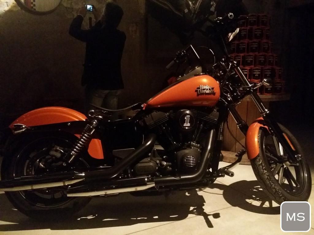 Harley-Davidson WeAreCustom 2015-15
