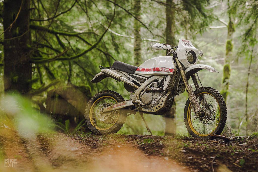 Ironcobra WR 450 F 81' 3